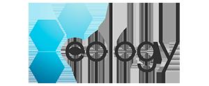 websale netzwerk seoagenturen eology logo